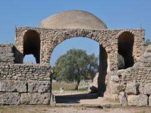 Olivo di Paestum