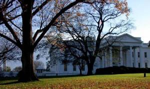 Washington -  The white house